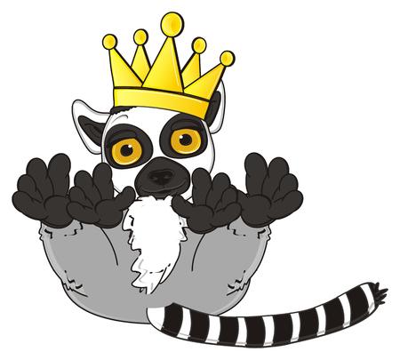 lemur: lemur in crown lying