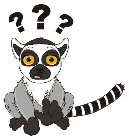 lemur: surprise lemur with many question marks Stock Photo
