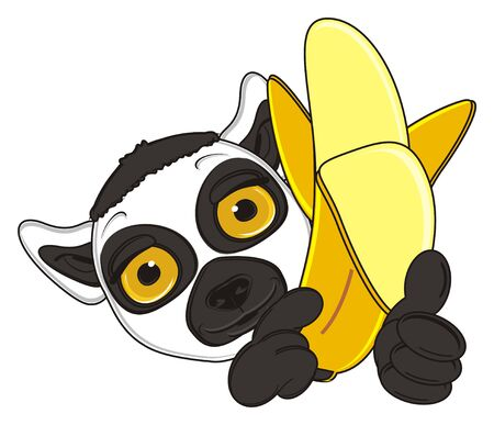snout: snout of lemur peek up from large banana