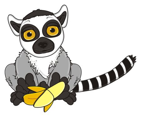 give: lemur give to you a banana Stock Photo
