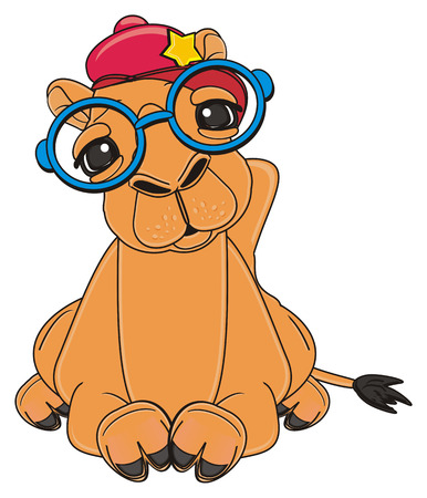camel in cap and glasses lying