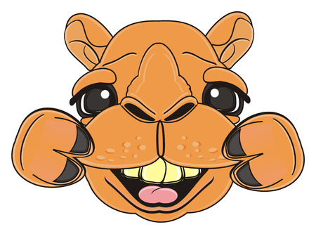 snout: laughing snout of camel