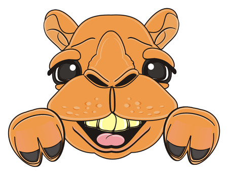 snout: laughing snout of camel with paws Stock Photo