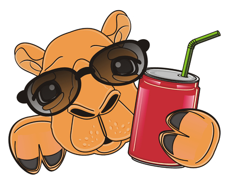 soda can: muzzle of camel with in sunglasses with soda can