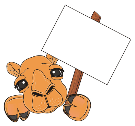 muzzle: muzzle of camel with clean paper on the stick Stock Photo