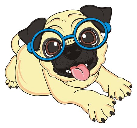 crazy beige pug in glasses lying