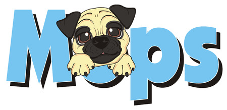 muzzle: muzzle of pug peek up from word mops