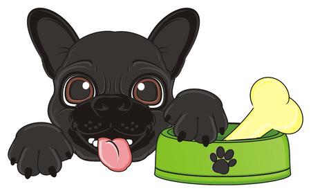 snout: snout of black french bulldog with bowl with a bone on it