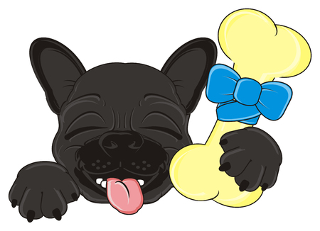 snout: sleeping snout of black french bulldog with a bone
