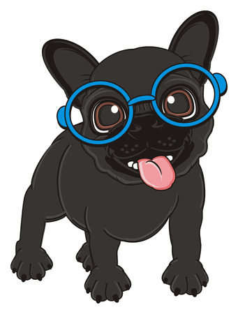 french bulldog: black french bulldog in blue glasses