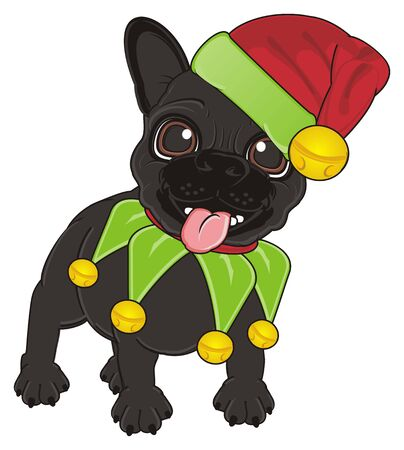 french bulldog: black french bulldog in Elf costume