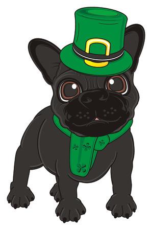 17 march: black french bulldog in St. Patricks costume