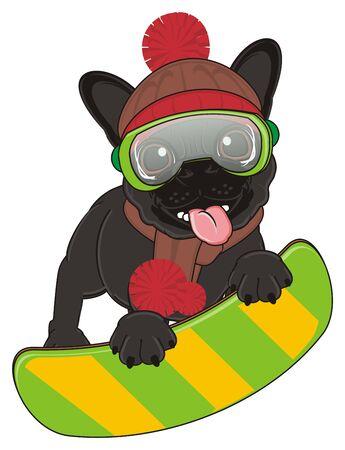 snowboard: black french bulldog riding on the snowboard