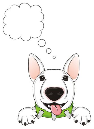 happy snour of white bull terrier thinking