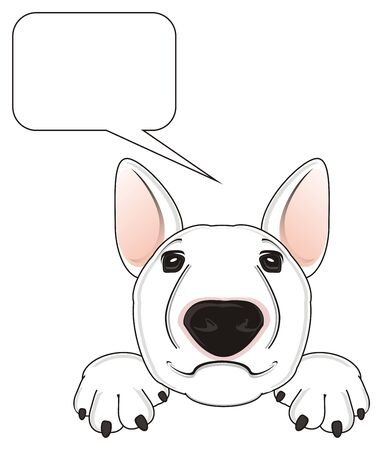 face of white bull terrier with clean callout