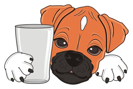 muzzle of boxer dog with empty glass Stock Photo