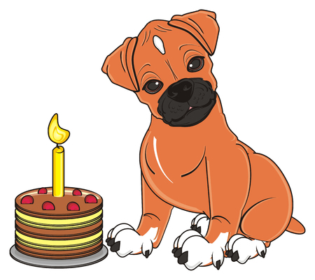 boxer dog sit with cake wiith candle Imagens