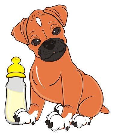 perro boxeador sentarse cerca de la botella de leche con el pezón