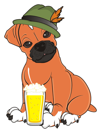 boxer dog in hat sit near the glass of beer Stock Photo