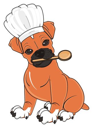 bark: boxer dog sit and ready to cooking