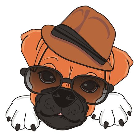 head of boxer dog in hat and sunglasses Stock Photo