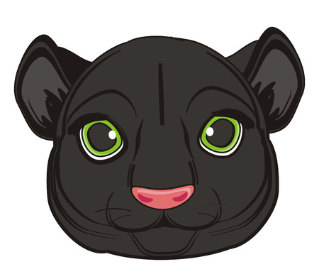 snout of panther