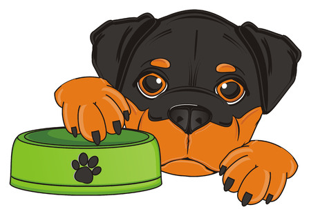 snout of rottweiler with empty bowl Stock Photo