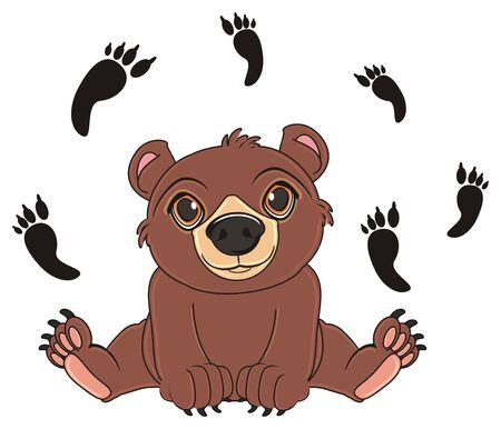 brown bear sit around a lot of his black footprints Stock Photo