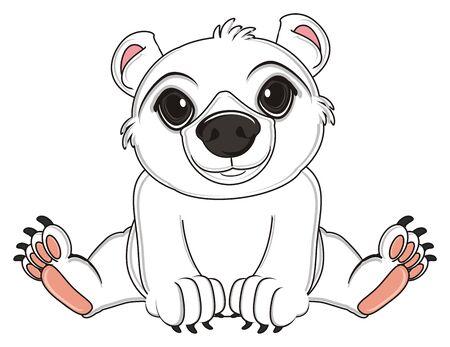 floe: white polar bear sit