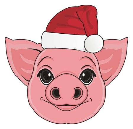 muzzle: muzzle of pig in red hat