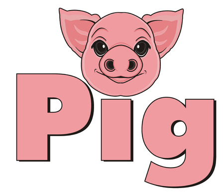snout of pig and pink word pig Stock Photo