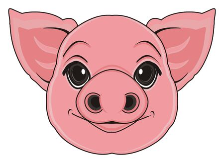 smiling snout of pig Stock Photo