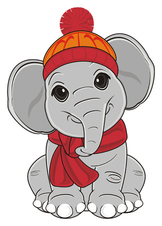 elephant in warm clothes sit