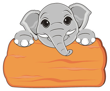 snout of elephant peek up from clean wooden plate