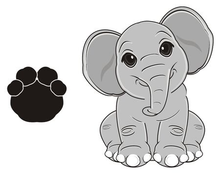elephant sit with large black footprint