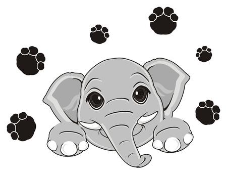 muzzle of elephant with black many footprint