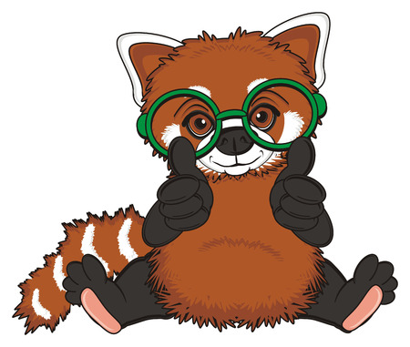 green glasses: red panda in green glasses sit and show gesture cool Stock Photo