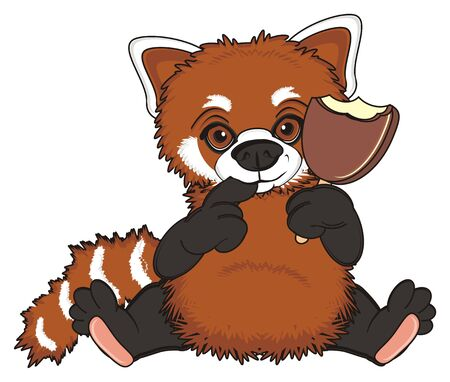 shy red panda sit and hold ice cream Stock Photo