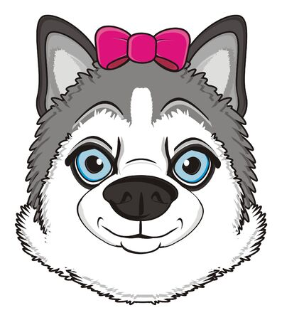 barking: snout of gray husky girl with pink bow