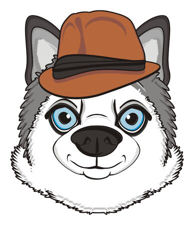 muzzle of gray husky in hat