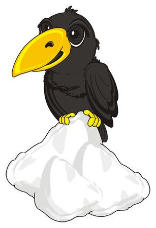 Crow si top sur la neige Banque d'images - 72903773