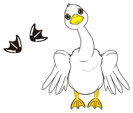 goose with raise wings stand near the black footprints Stock Photo