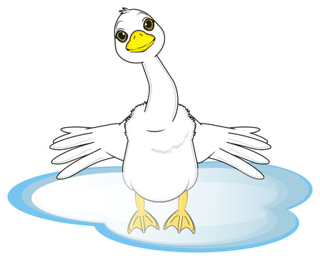 goose with spread wings stand on the water Stock Photo