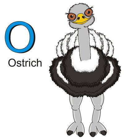 ostrich stand with word and sign o Stock Photo
