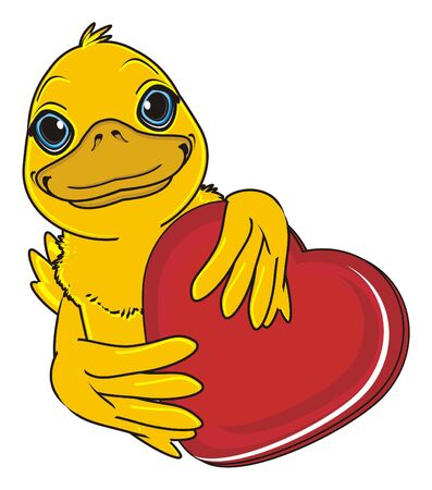 duck peek up from red heart Stock Photo