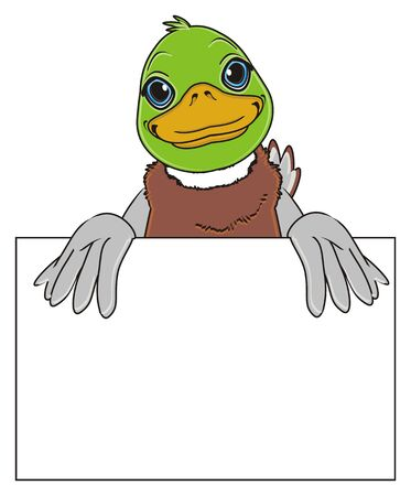 adult duck hold a clean paper Stock Photo