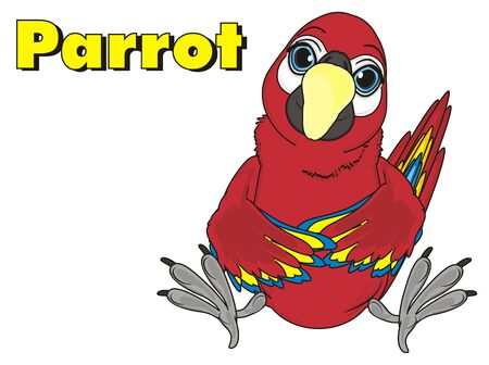 red parrot sit with yellow word parrot