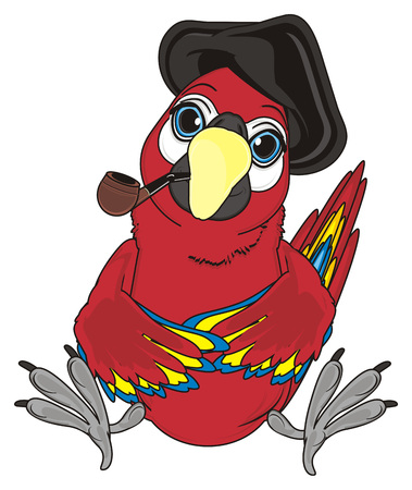 pirate red parrot in black hat sit and smoke a pipe