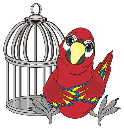 red parrot sit near the metal empty cage