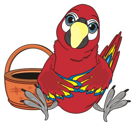 paw smart: red parrot with empty basket